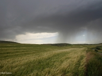 harry-keijsers-onweer-op-komst